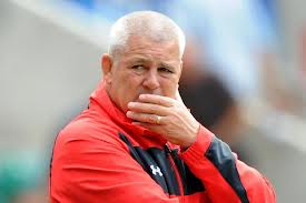 Gatland has much to ponder before the World Cup